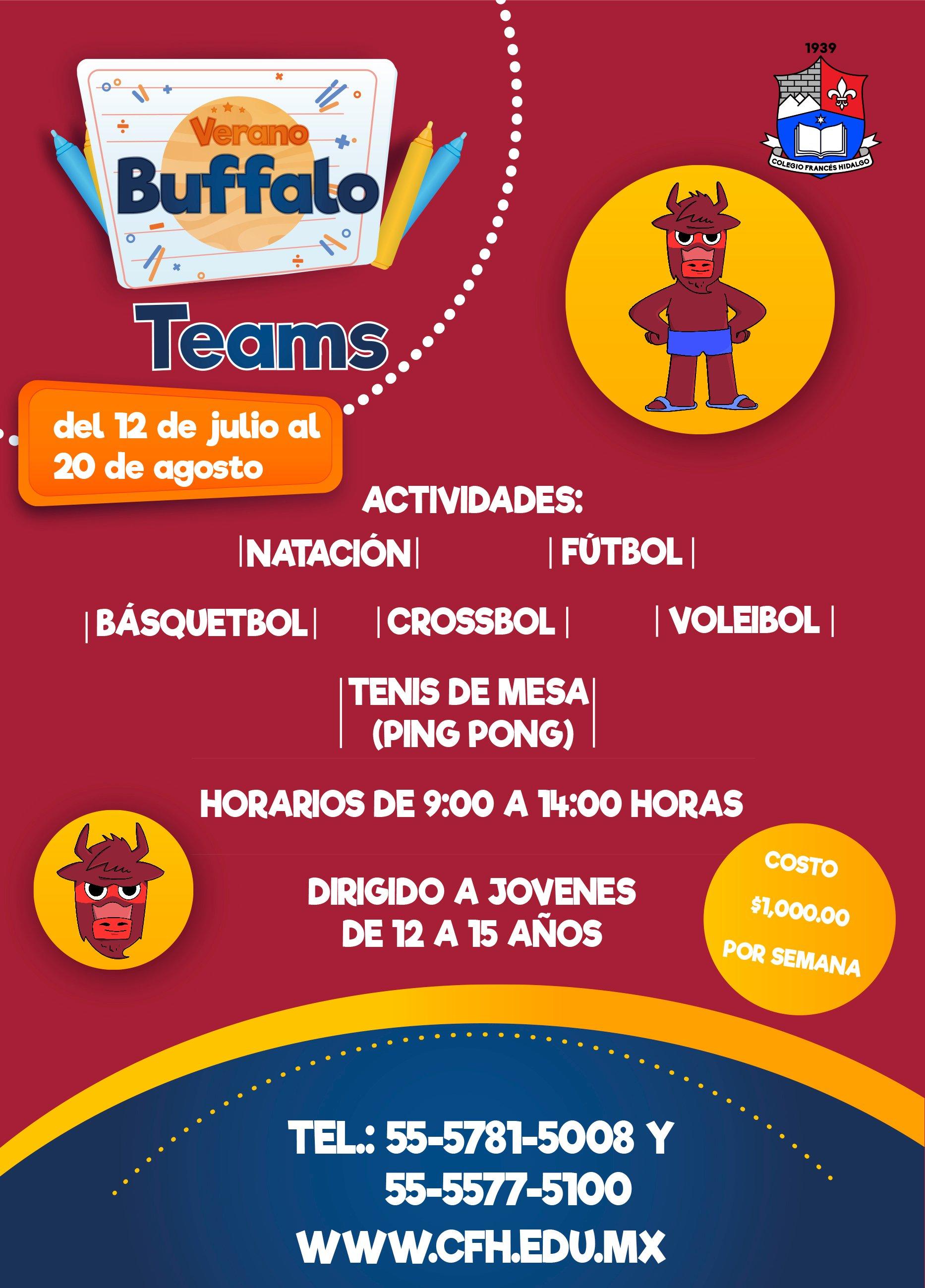 Búfalo Teams 2 copia